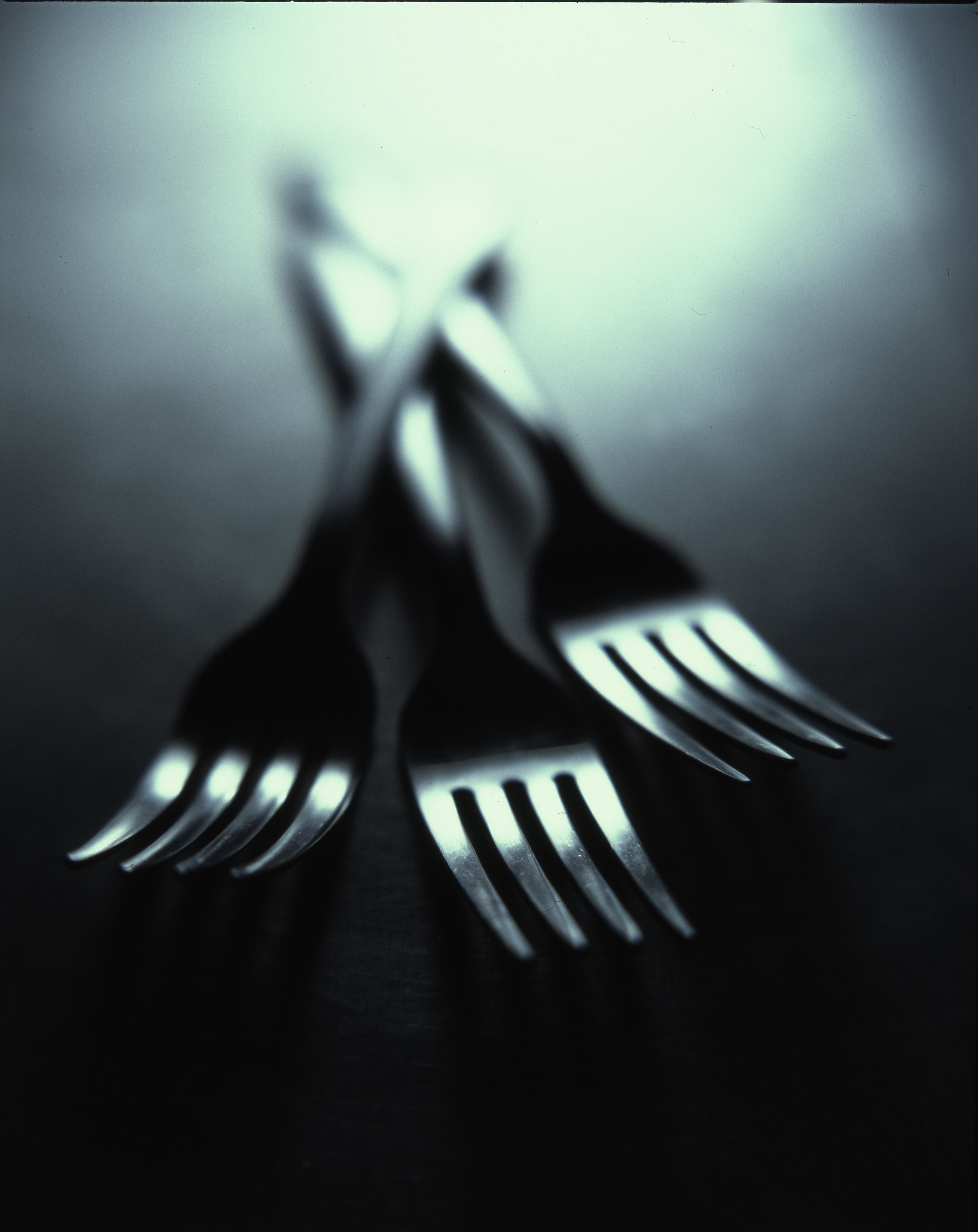 cibo-cena-pranzo-cena